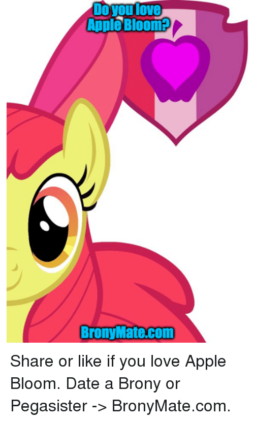 Brony pegasister dating