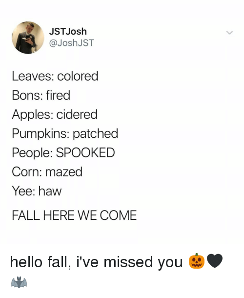 Spooked: JSTJosh  @JoshJST  Leaves: colored  Bons: fired  Apples: cidered  Pumpkins: patched  People: SPOOKED  Corn: mazed  Yee: haw  FALL HERE WE COME hello fall, i've missed you 🎃🖤🦇