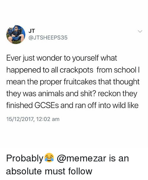 Animals, School, and Shit: JT  @JTSHEEPS35  Ever just wonder to yourself what  happened to all crackpots from school l  mean the proper fruitcakes that thought  they was animals and shit? reckon they  finished GCSEs and ran off into wild like  15/12/2017, 12:02 am Probably😂 @memezar is an absolute must follow