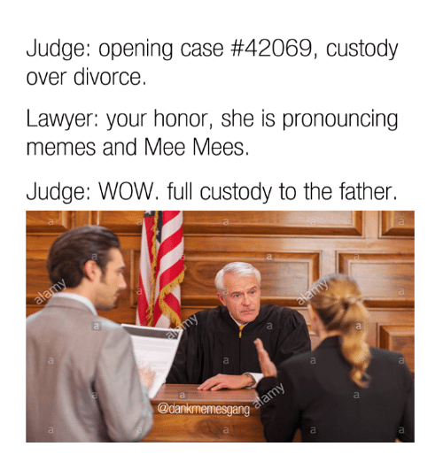 Pronounce Memes: Judge: opening case #42069, custody  over divorce.  Lawyer: your honor, she is pronouncing  memes and Mee Mees.  Judge: WOW. full custody to the father.  @dankmemesgang