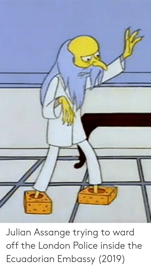 embassy: Julian Assange trying to ward off the London Police inside the Ecuadorian Embassy (2019)