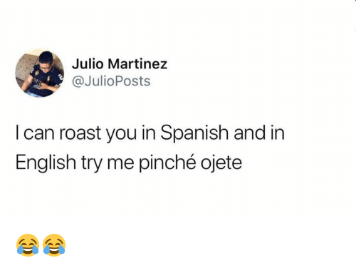 try me: Julio Martinez  @JulioPosts  Dp  I can roast you in Spanish and in  English try me pinché ojete 😂😂