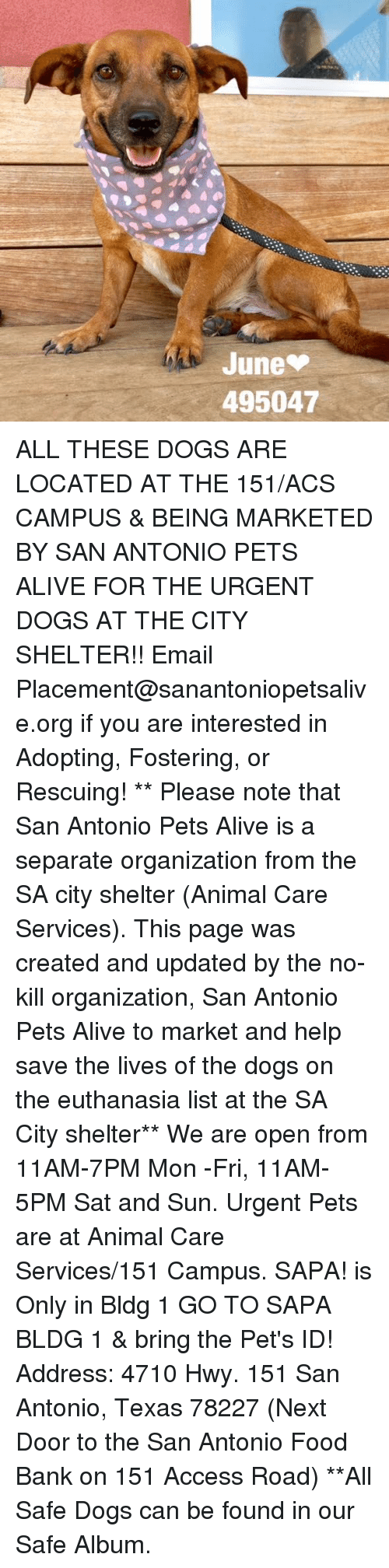 Save Our Pets Food Bank