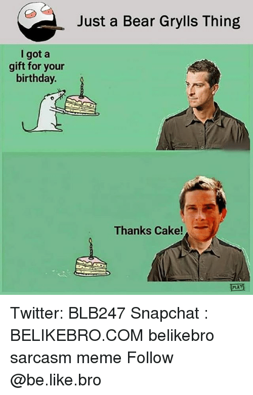 Be Like, Birthday, and Meme: Just a Bear Grylls Thing  I got a  gift for your  birthday.  Thanks Cake!  MAT Twitter: BLB247 Snapchat : BELIKEBRO.COM belikebro sarcasm meme Follow @be.like.bro