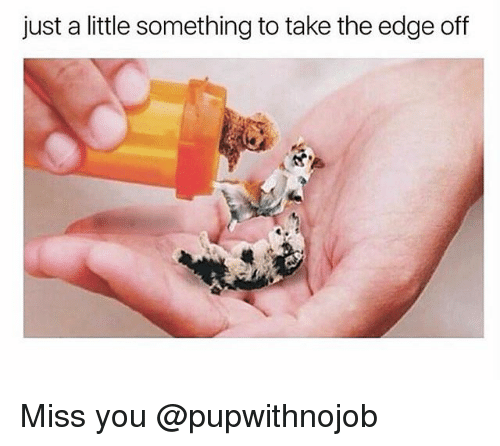 Funny, Edge, and The Edge: just a little something to take the edge off Miss you @pupwithnojob
