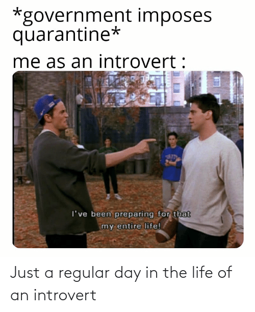 an introvert: Just a regular day in the life of an introvert