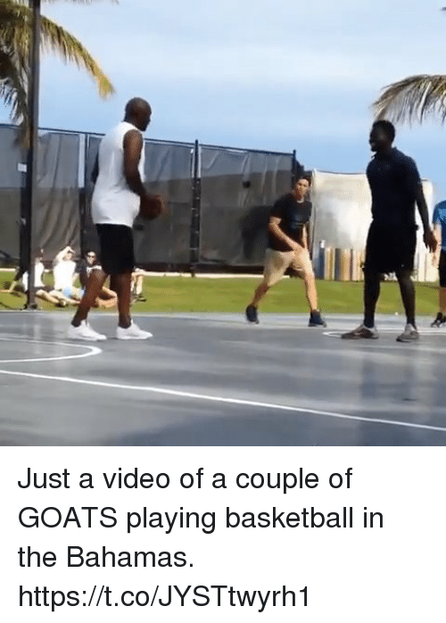 the bahamas: Just a video of a couple of GOATS playing basketball in the Bahamas.  https://t.co/JYSTtwyrh1
