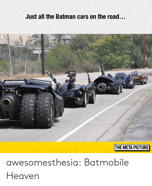 On the Road: Just all the Batman cars on the road...  THE META PICTURE awesomesthesia:  Batmobile Heaven