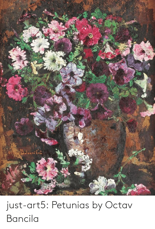 org: just-art5:    Petunias by Octav Bancila