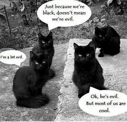 evi: Just because we re  black, doesn't mean  we're evil  I'm a bit evi.  C%  Ok, he's evil.  But most of us are  COO