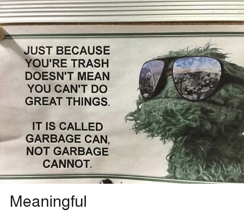 Youre Trash: JUST BECAUSE  YOU'RE TRASH  DOESN'T MEAN  YOU CAN'T DC  GREAT THINGS.  IT IS CALLED  GARBAGE CAN  NOT GARBAGE  CANNOT Meaningful