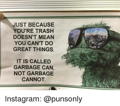 Instagram, Trash, and Mean: JUST BECAUSE  YOU'RE TRASH  DOESN'T MEAN  YOU CAN'T DO  GREAT THINGS.  IT IS CALLED  GARBAGE CAN,  NOT GARBAGE  CANNOT Instagram: @punsonly