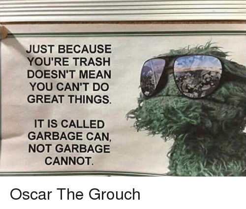 Youre Trash: JUST BECAUSE  YOU'RE TRASH  DOESN'T MEAN  YOU CAN'T DO  GREAT THINGS.  IT IS CALLED  GARBAGE CAN,  NOT GARBAGE  CANNOT Oscar The Grouch