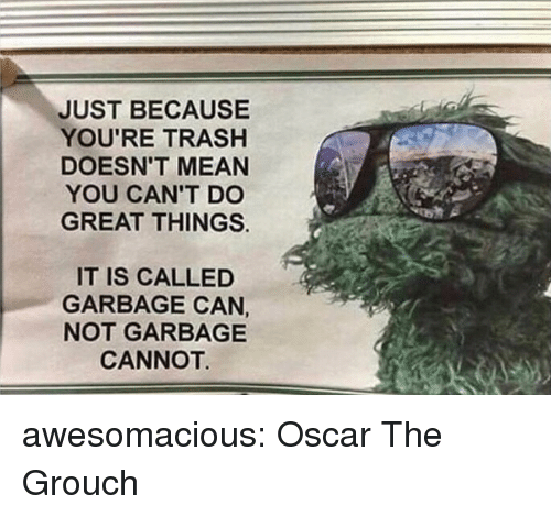 Youre Trash: JUST BECAUSE  YOU'RE TRASH  DOESN'T MEAN  YOU CAN'T DO  GREAT THINGS.  IT IS CALLED  GARBAGE CAN,  NOT GARBAGE  CANNOT awesomacious:  Oscar The Grouch