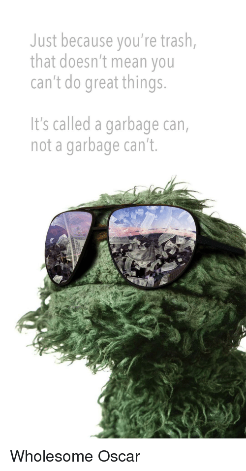 Youre Trash: Just because you're trash,  that doesn't mean you  can't do great things  It's called a garbage can,  not a garbage can't. <p>Wholesome Oscar</p>