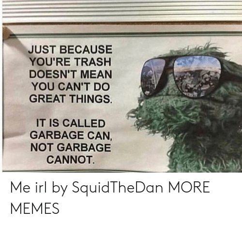 garbage can: JUST BECAUSE  YOU'RE TRASHH  DOESN'T MEAN  YOU CAN'T DO  GREAT THINGS.  IT IS CALLED  GARBAGE CAN,  NOT GARBAGE  CANNOT Me irl by SquidTheDan MORE MEMES