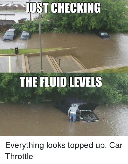 Cars, Ups, and Car: JUST CHECKING  THE FLUID LEVELS Everything looks topped up. Car Throttle
