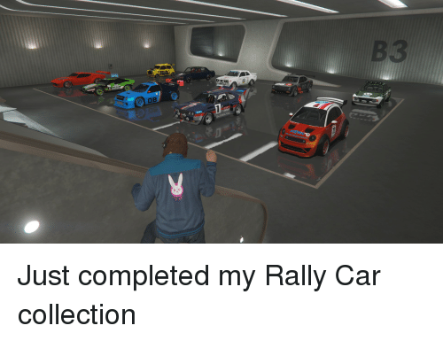 rally car: Just completed my Rally Car collection