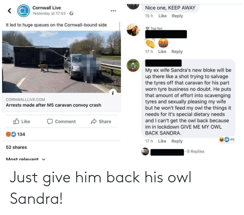 Just Give: Just give him back his owl Sandra!