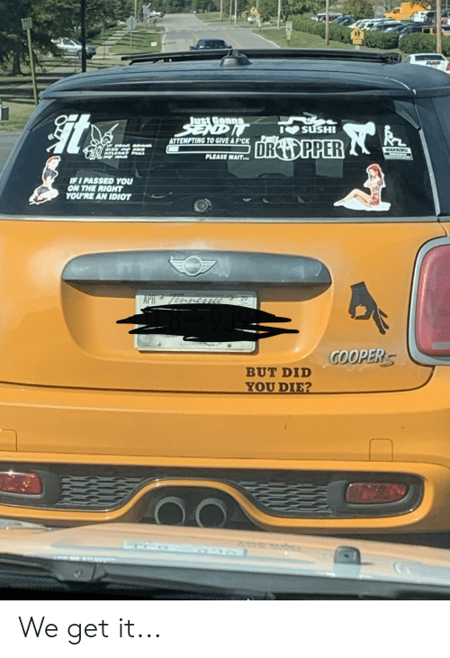 did you die: Just Gonna  SENDIT  SUSHI  Panty  ATTEMPTING TO GIVE A F'CK  DRO PPER  WARNING  ATLEADY PULL  WAR  PLEASE WAIT  IFI PASSED YOU  ON THE RIGHT  YOU'RE AN IDIOT  MINI  APR 7ACme  20  COOPERS  BUT DID  YOU DIE? We get it...