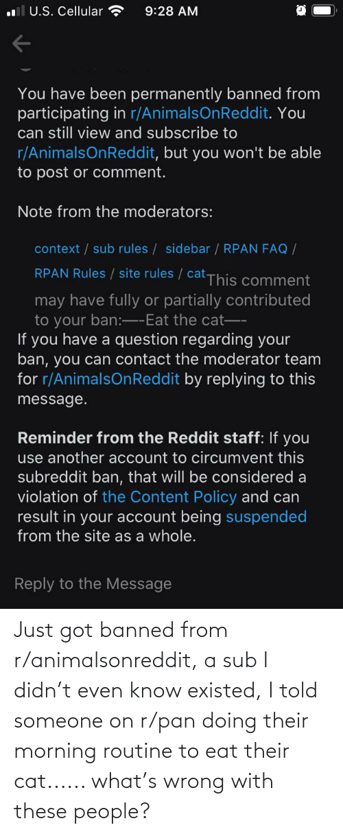 morning routine: Just got banned from r/animalsonreddit, a sub I didn't even know existed, I told someone on r/pan doing their morning routine to eat their cat...... what's wrong with these people?