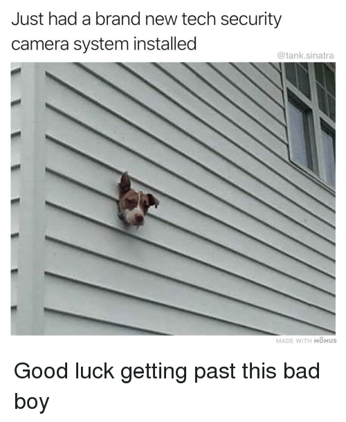 security camera: Just had a brand new tech security  camera system installed  @tank.sinatra  MADE WITH MOMUS Good luck getting past this bad boy