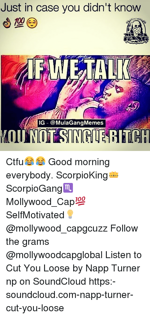 Ig Mula Gang: Just in case you didn't know  WE TALK  IG @Mula Gang Memes  YOU NOT SINGLE  BITCH Ctfu😂😂 Good morning everybody. ScorpioKing👑 ScorpioGang♏ Mollywood_Cap💯 SelfMotivated💡 @mollywood_capgcuzz Follow the grams @mollywoodcapglobal Listen to Cut You Loose by Napp Turner np on SoundCloud https:-soundcloud.com-napp-turner-cut-you-loose