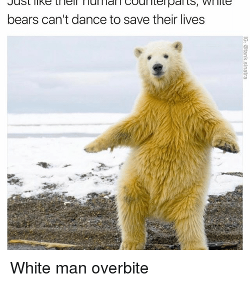Funny, Coal, and Saved: Just like lell l lul l lal Coal itel pal ts, VVl lite  bears can't dance to save their lives White man overbite