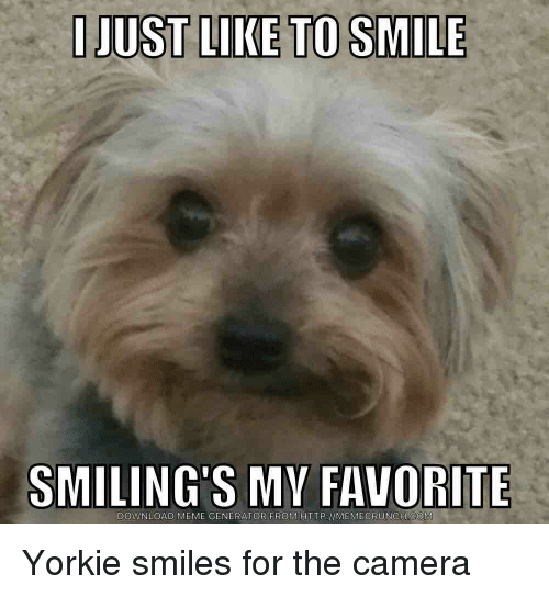 Funny Smile Memes Of 2017 On SIZZLE