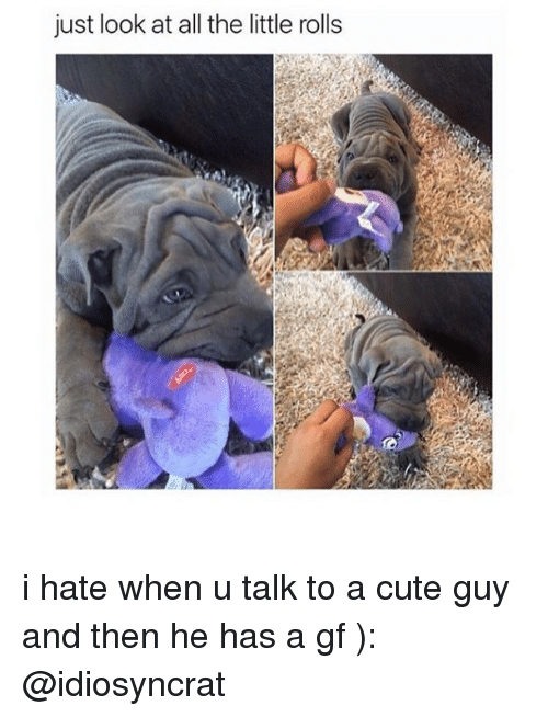 Cute, Memes, and All The: just look at all the little rolls i hate when u talk to a cute guy and then he has a gf ): @idiosyncrat