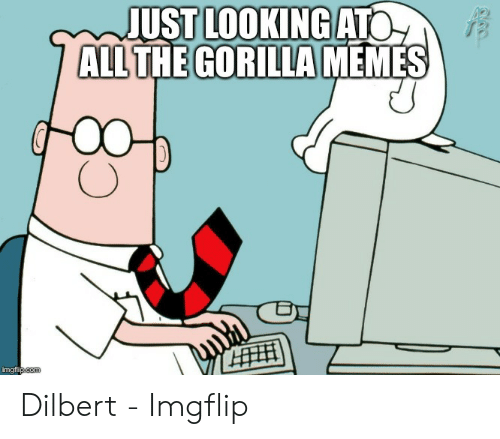 Gorilla Memes: JUST LOOKING ATO  ALL THE GORILLA MEMES  HH  imgflipcom Dilbert - Imgflip