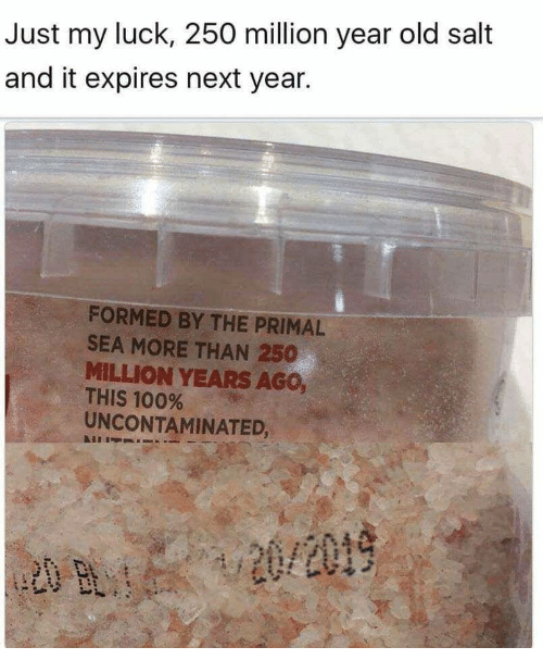 Salt And: Just my luck, 250 million year old salt  and it expires next year.  FORMED BY THE PRIMAL  SEA MORE THAN 250  MILLION YEARS AGO  THIS 100%  UNCONTAMINATED,