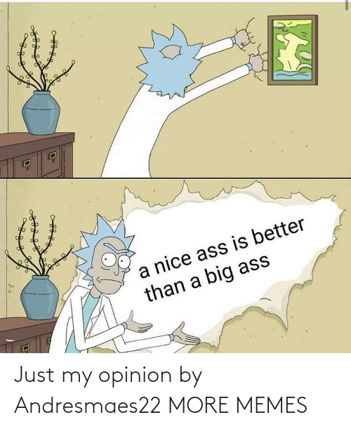 My Opinion: Just my opinion by Andresmaes22 MORE MEMES