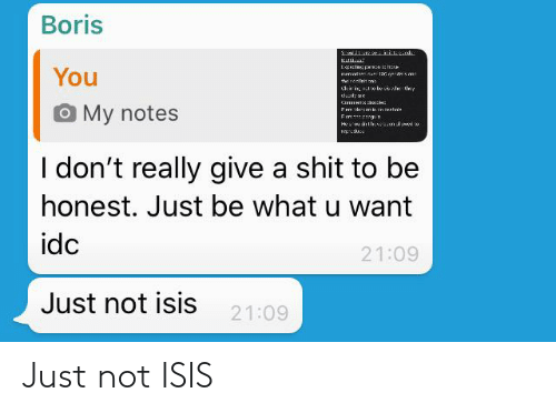 Not Isis: Just not ISIS