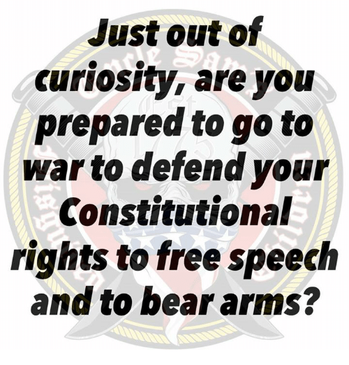 Constitutional: Just out of  curiosity, are yoiu  prepared to go to  war to defend your  Constitutional  rights to free speech  and to bear arms?