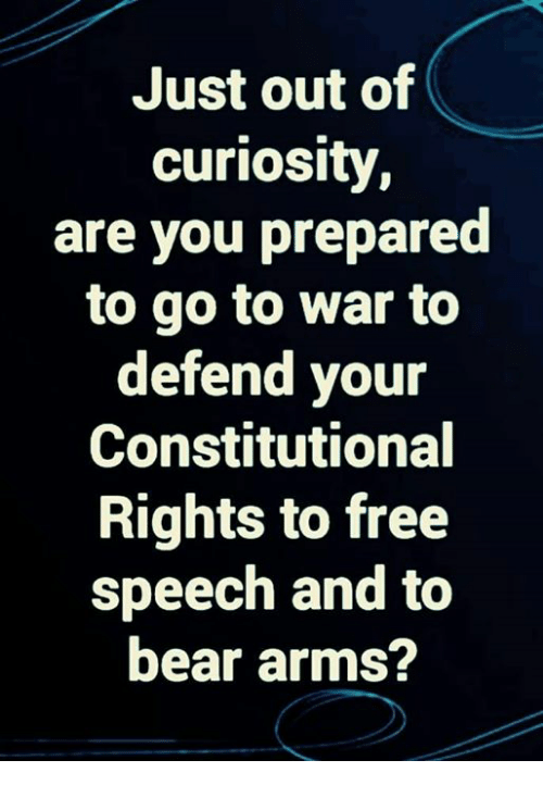 free speech: Just out of  curiosity  are you prepared  to go to war to  defend your  Constitutional  Rights to free  speech and to  bear arms?