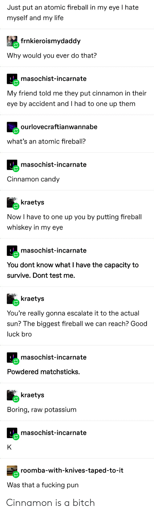 fireball whiskey: Just put an atomic fireball in my eye I hate  myself and my life  frnkieroismydaddy  Why would you ever do that?  masochist-incarnate  My friend told me they put cinnamon in their  eye by accident and I had to one up them  ourlovecraftianwannabe  what's an atomic fireball?  masochist-incarnate  Cinnamon candy  kraetys  Now I have to one up you by putting fireball  whiskey in my eye  masochist-incarnate  You dont know what I have the capacity to  survive. Dont test me.  kraetys  You're really gonna escalate it to the actual  sun? The biggest fireball we can reach? Good  luck bro  masochist-incarnate  Powdered matchsticks.  kraetys  Boring, raw  potassium  masochist-incarnate  K  roomba-with-knives-taped-to-it  Was that a fucking pun Cinnamon is a bitch