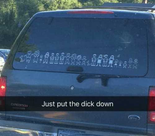 The Dick: Just put the dick down  EXPEDITION  CH