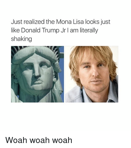 Donald Trump, Memes, and Mona Lisa: Just realized the Mona Lisa looks just  like Donald Trump Jr I am literally  shaking Woah woah woah