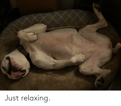 Just Relaxing: Just relaxing.