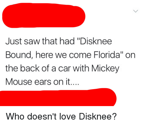 """mickey mouse ears: Just saw that had """"Disknee  Bound, here we come Florida"""" on  the back of a car with Mickey  Mouse ears on it...."""