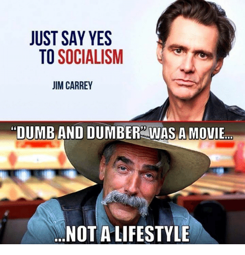 "Dumb, Memes, and Lifestyle: JUST SAY YES  TO SOCIALISM  IM CARREY  ""DUMB AND DUMBER WAS A MOVIE  NOT A LIFESTYLE"