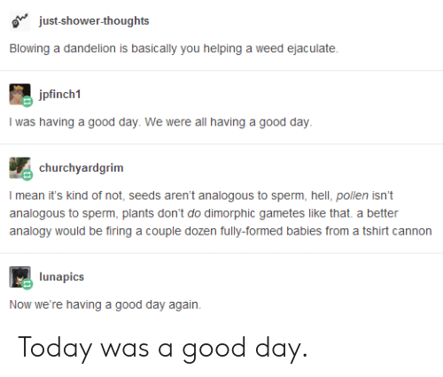 today was a good day: just-shower-thoughts  Blowing a dandelion is basically you helping a weed ejaculate.  ini  I was having a good day. We were all having a good day  churchyardgrim  I mean it's kind of not, seeds aren't analogous to sperm, hell, pollen isn't  analogous to sperm, plants don't do dimorphic gametes like that. a better  analogy would be firing a couple dozen fully-formed babies from a tshirt cannon  lunapics  Now we're having a good day again. Today was a good day.