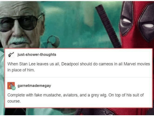 Aviators: just-shower-thoughts  When Stan Lee leaves us all, Deadpool should do cameos in all Marvel movies  in place of him.  garnetmademegay  Complete with fake mustache, aviators, and a grey wig. On top of his suit of  course.