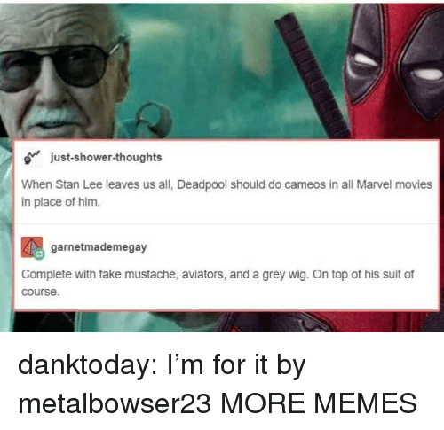 Aviators: just-shower-thoughts  When Stan Lee leaves us all, Deadpool should do cameos in all Marvel movies  in place of him.  garnetmademegay  Complete with fake mustache, aviators, and a grey wig. On top of his suit of  course. danktoday:  I'm for it by metalbowser23 MORE MEMES