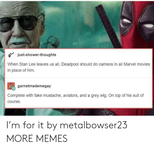 Aviators: just-shower-thoughts  When Stan Lee leaves us all, Deadpool should do cameos in all Marvel movies  in place of him.  garnetmademegay  Complete with fake mustache, aviators, and a grey wig. On top of his suit of  course. I'm for it by metalbowser23 MORE MEMES