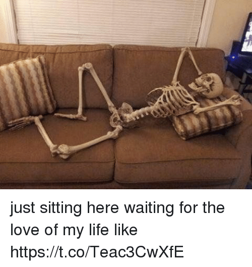 Funny, Life, and Love: just sitting here waiting for the love of my life like https://t.co/Teac3CwXfE