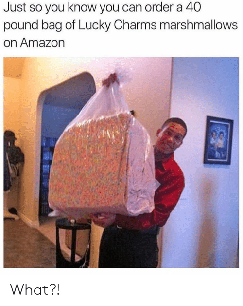 charms: Just so you know you can order a 40  pound bag of Lucky Charms marshmallows  on Amazon What?!