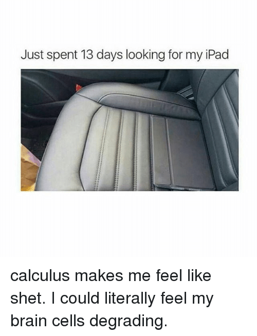 my brain: Just spent 13 days looking for my iPad calculus makes me feel like shet. I could literally feel my brain cells degrading.