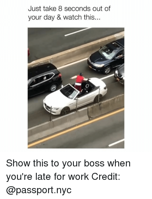 Late For Work: Just take 8 seconds out of  your day & watch this... Show this to your boss when you're late for work Credit: @passport.nyc